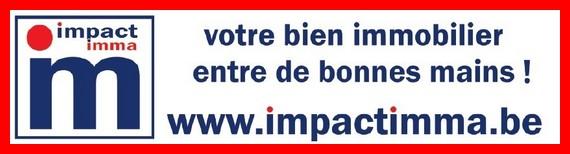Impact dpi 301